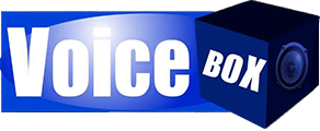 voicebox-logo-4